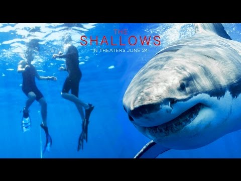 Thumbnail: The Try Guys Swim With Sharks // Sponsored by The Shallows