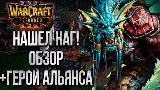 НАГИ + АЛЬЯНС В КАМПАНИИ: Как Выглядят Ключевые Персонажи Warcraft 3 Reforged