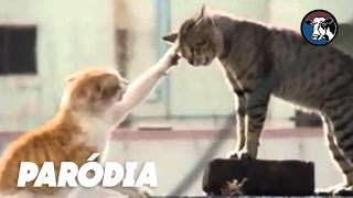 O Exorcismo do Gato Possuído (Paródia/Redublagem)