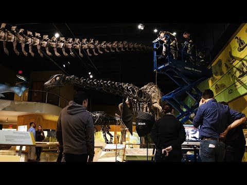BEHIND THE SCENES: Cleveland Museum of Natural History Photoshoot