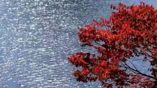 """東京の奥座敷奥多摩のそのまた奥、天空の集落""""奥""""は秋の色に染まってい..."""
