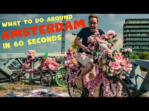 WHAT TO DO AROUND AMSTERDAM In 60 Seconds