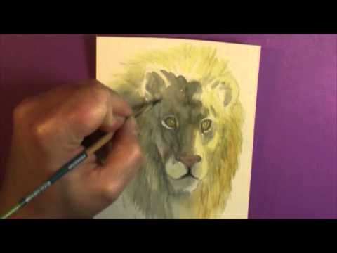 Watercolor 101 How to paint Shade on Fur