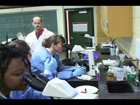 Medical Laboratory Science at Armstrong