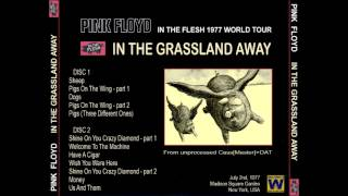 Pink Floyd - In The Grassland Away (Live MSG, New York 1977-07-02)