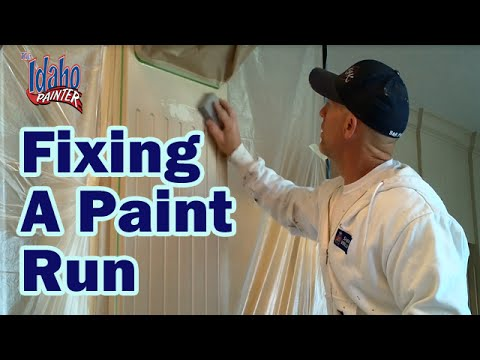 HOW TO FIX A PAINT RUN.  Painting hacks repairing drips & runs. Fixing paint sags.