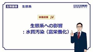 【生物基礎】 生態系14 生態系への影響:水質汚染 富栄養化 (11分)