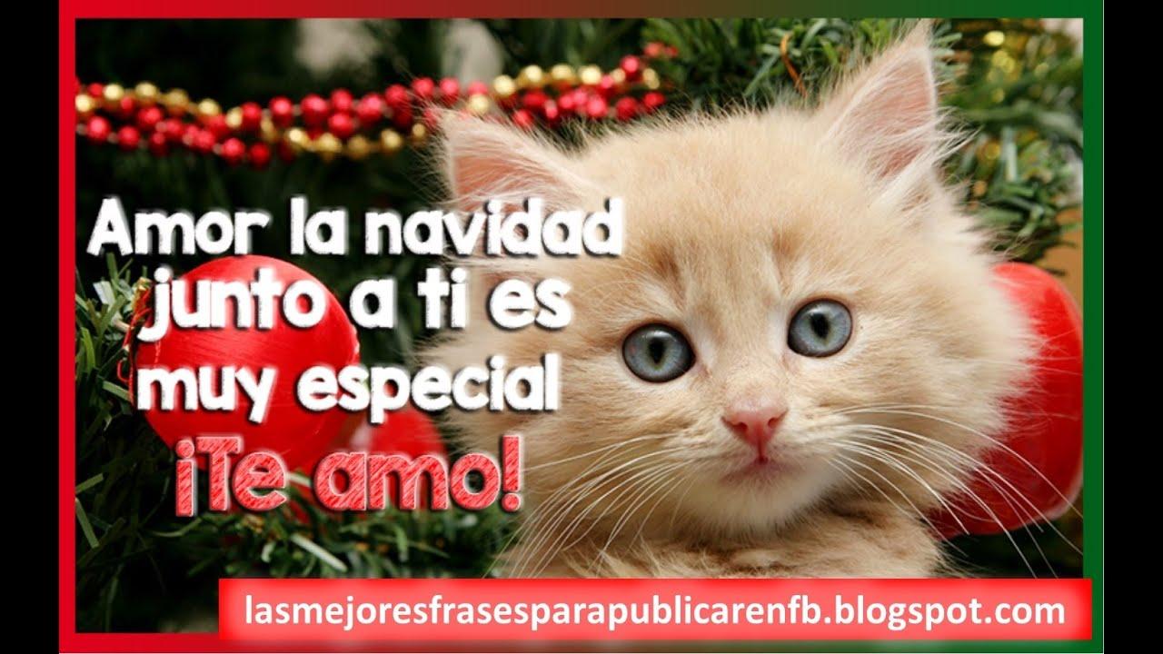 Feliz Navidad Amor Frases De Navidad Tarjetas De Navidad