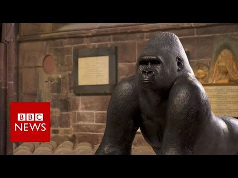 How Contemporary sculptures are made? - BBC News