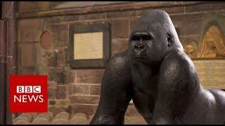 How Contemporary sculptures are made?   BBC News
