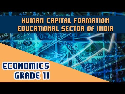 Economics Chapter 5 | Part 6 | Human Capital Formation - Educational Sector of India