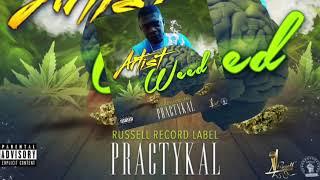 Practykal - Artist Weed - August 2019