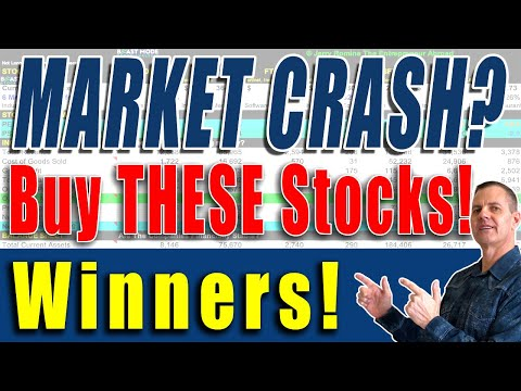 These Stocks Are Strong Even In A Crashing Market. Buy Fundamentals
