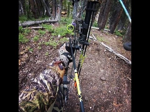 The Pursuit - (P&Y 6X7) - Archery Elk Hunting in Idaho - Sept 2013 - Public Land & D.I.Y.