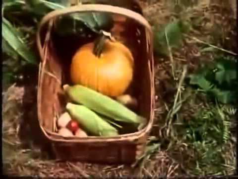 Gardening without work -Ruth Stout 2of2 (ENG-MAGYAR)