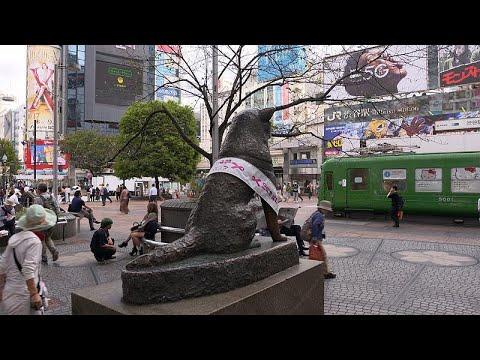 Tokyo'nun 5 dakika uzaklıktaki iki farklı semti: Modern Shibuya ve geleneksel Shimokitazawa
