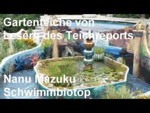 Gartenteich und schwimmbiotop von nanu mazuku aus for Gartenteich anlegen youtube