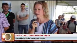 Kaliteli süt, Çanakkale'den geçer