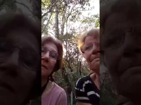 Dos sexagenarias sobreviven dos días perdidas en la selva tucumana
