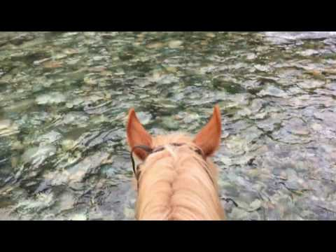 Horseback riding, La Confluencia, Patagonia, Argentina
