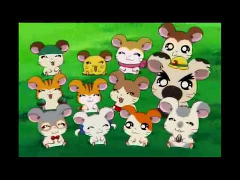 Hamtaro Birthday Tribute