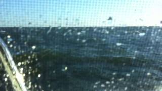 Buzzards Bay 34 power catamaran rough seas