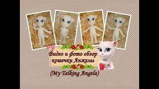 🐱 Видео и фото обзор кошки Анжелы (My talking Angela) 🐱