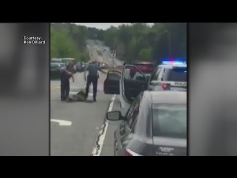 Gwinnett officers out of job after violent traffic stop