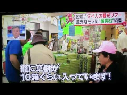 Fuji TV 'chase after' a Thai tourist group with Freeplus Travel (Part 1)