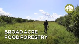 Broad Acre Cold Climate Food Forestry in Action