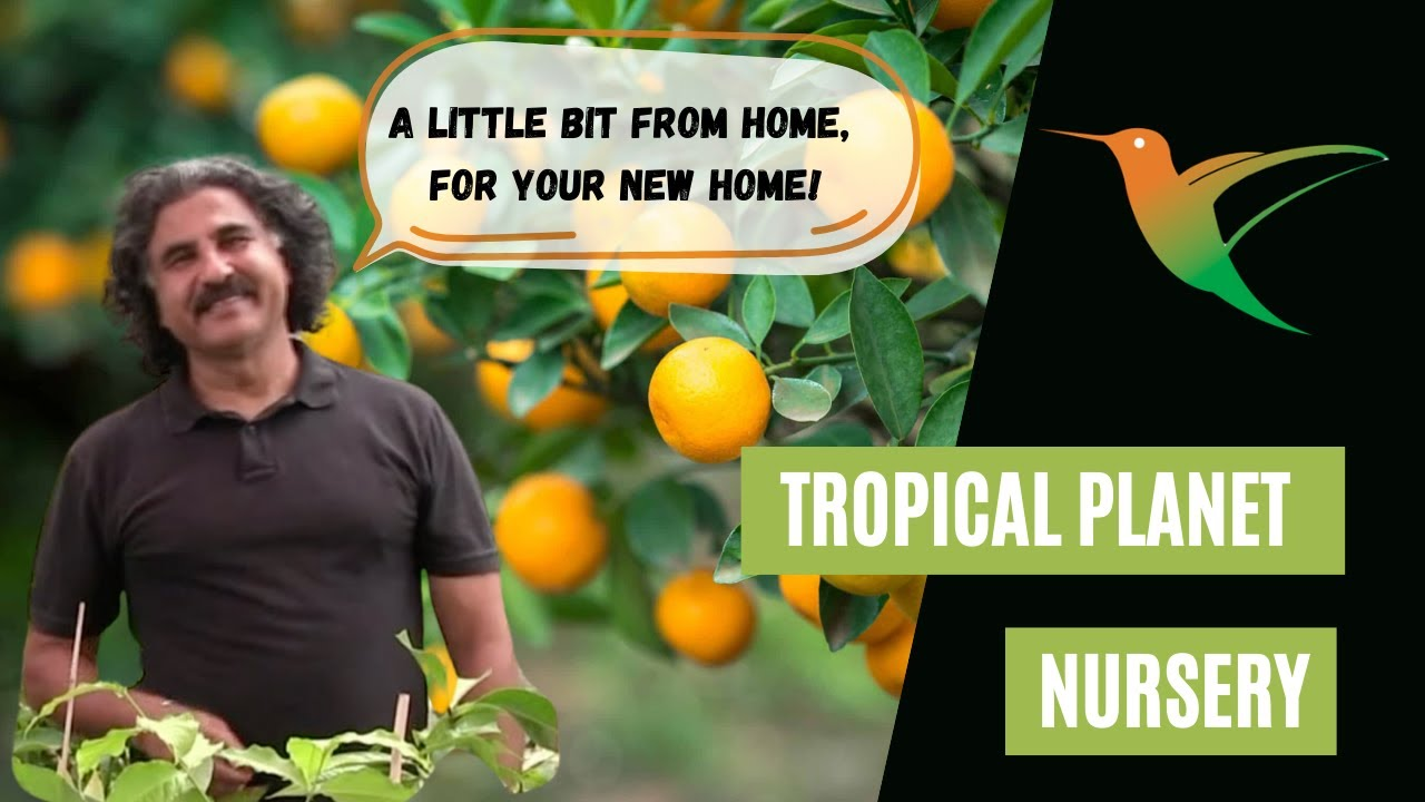 Tropical Planet Nursery is Open for Business!