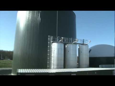 Synergy Biogas Generates Renewable Energy