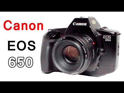 How to Use a Canon EOS 650 SLR Film Camera