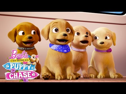 Puppy Playground | Barbie & Her Sisters In A Puppy Chase | Barbie