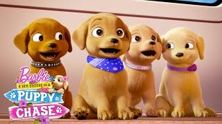Puppy Playground   Barbie & Her Sisters in a Puppy Chase   @Barbie