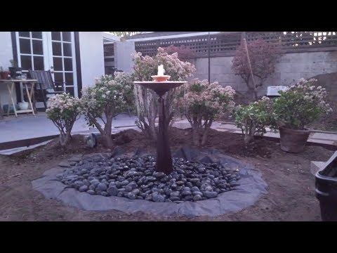 Backyard Ecological Landscape: Building A Fountain