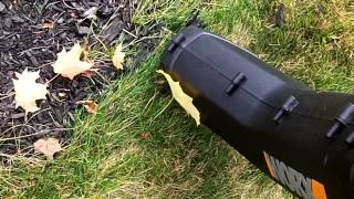 Worx TRIVAC Actual Use
