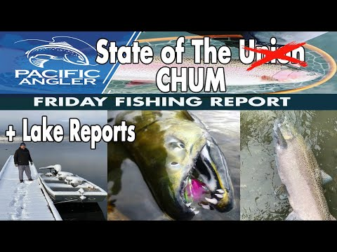 Vancouver Fishing Report - Chum Salmon Fishing Update + Lake Fishing Reports // Oct  23, 2020