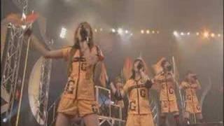 """Ongaku Gatas performing """"Sakaero Habatake Gatas Brilhantes H.P."""""""