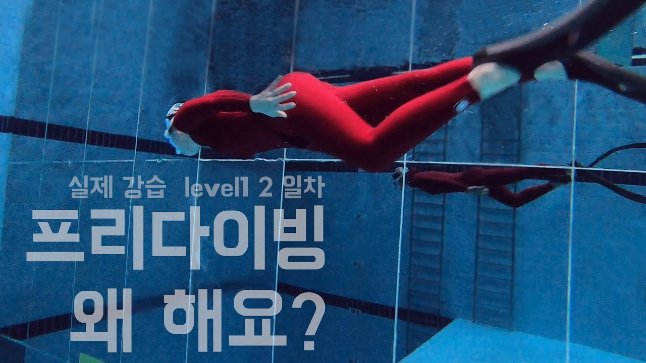 프리다이빙 왜배울려고 해요?두번째 실제강습영상 덕다이빙 다이나믹! 프리다이빙강의 드랍더다이빙 프리다이빙자격증 프리다이빙초보