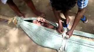Dolly service at sathuragiri