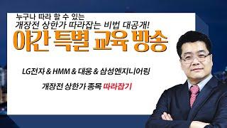 LG전자 & HMM & 대웅 & …