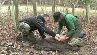 Ловля карпа на бойлы. Richworth S-Core RU