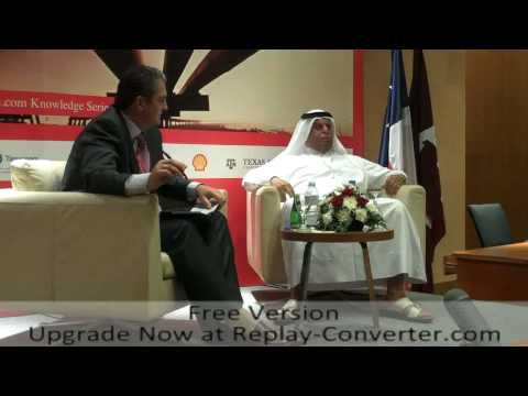 "Gulf Intelligence-""Opec50-Doha Energy forum"" 2010-vid 4."