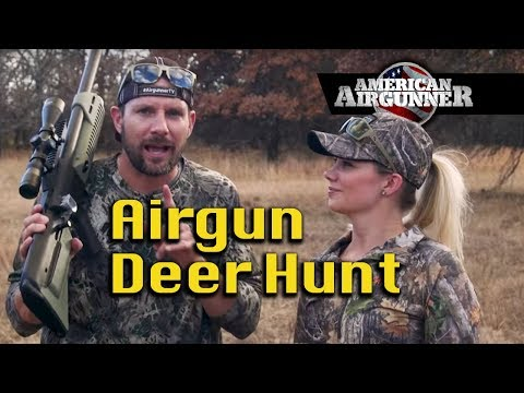 Airgun Hunting Deer Brittney Glaze And Hammer : American Airgunner TV