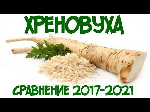 Хреновуха 2017-2021 сравнение и самый простой рецепт