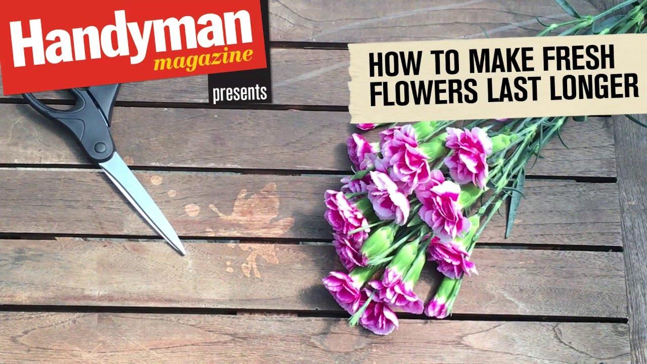 How to make cut flowers last longer youtube how to make cut flowers last longer reviewsmspy