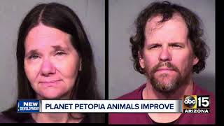 Animals seized from Phoenix boarding facility recovering