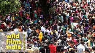 Pilgrims throng during Nanda Devi Raj Jat Yatra - Uttarakhand
