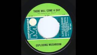 MAC MacLEOD / EXPLODING MUSHROOM There Will Come A Day DANISH psych